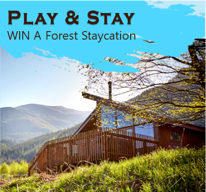 Win A Family Forest Holiday
